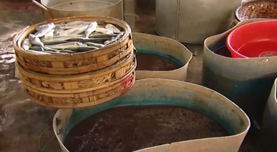 Bắt quả tang 2 cơ sở dùng hóa chất lạ hấp cá